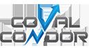 Condor Cash Logo